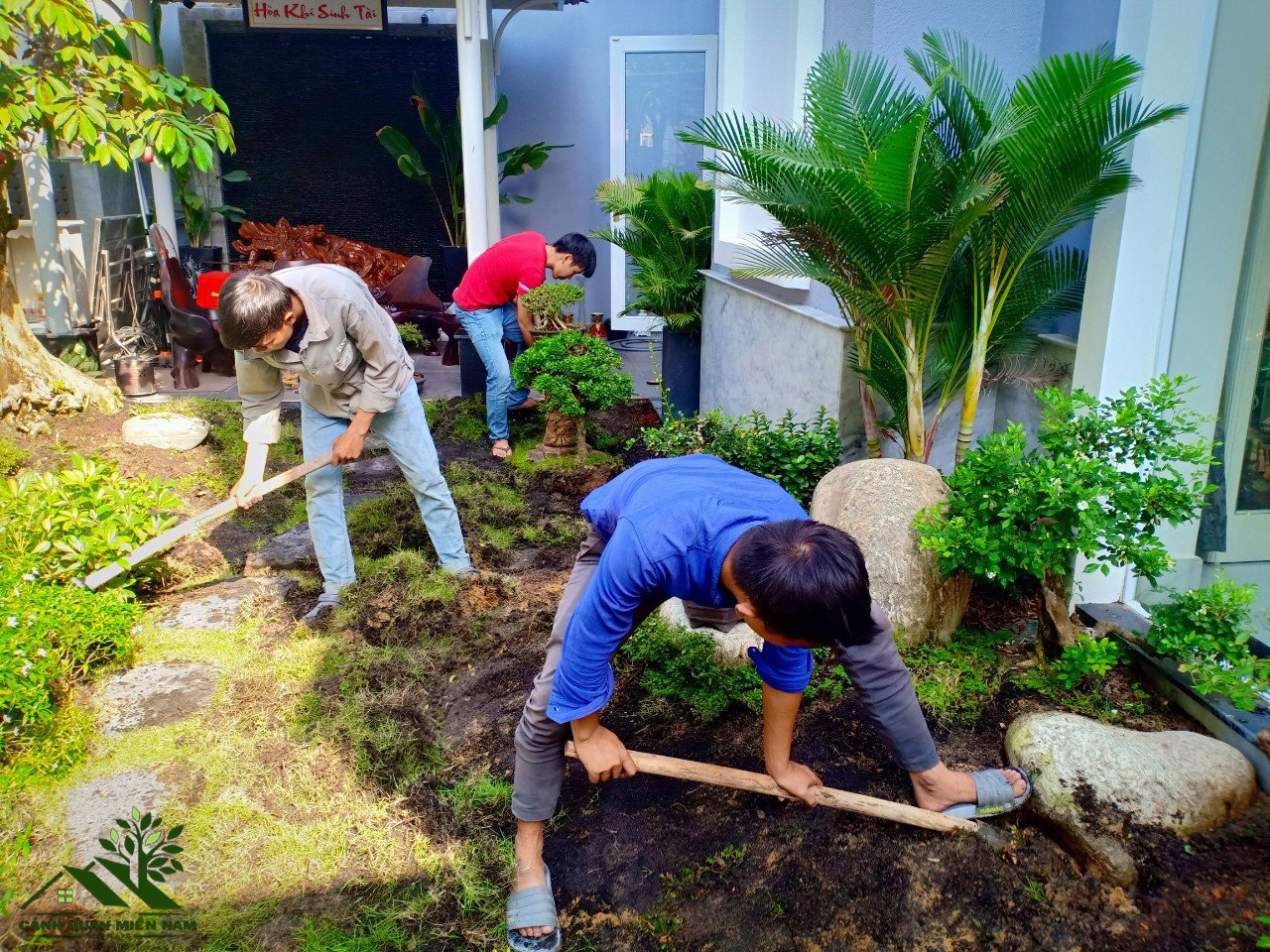 Thiết kế và chăm sóc sân vườn