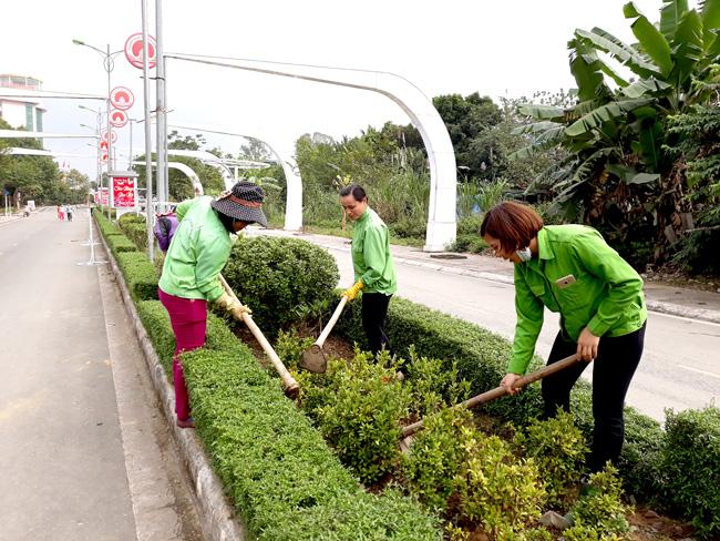 Công ty chăm sóc cây xanh