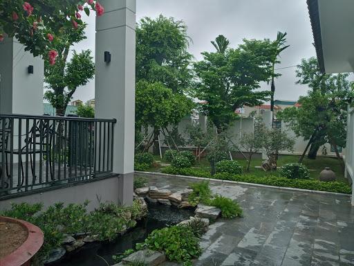 Dịch vụ trồng cây xanh tại nhà