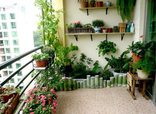 Tiểu cảnh khô trong nhà dễ chăm sóc, mẫu đẹp nhất năm 2021